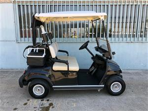 Golf Cart ( With Delta Q Battery Charger )