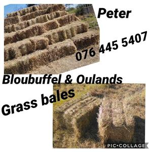 Oulands & Bloubuffel Grass bales