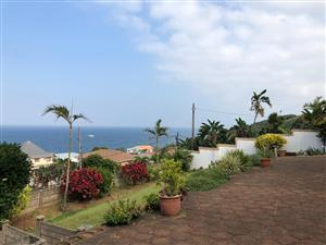 To rent bluff house with sea views