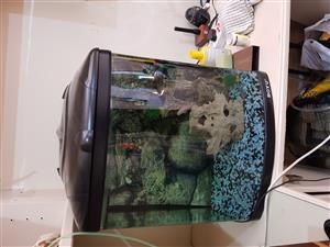 Boyu marine fish tank.
