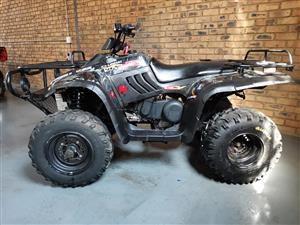 2011 Linhai Rustler XL 260