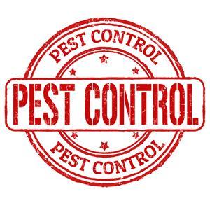 PEST CONTROL & HYGIENE
