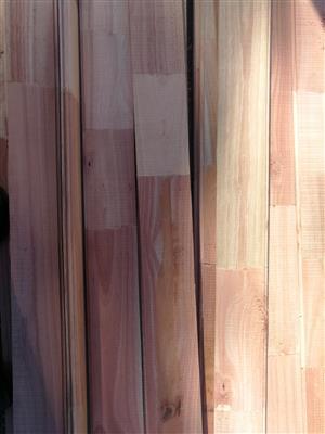 Saligna wood timber