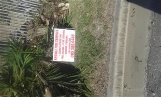 KNOWLE TREE SERVICES-Stumps removal-Bluewaterbay,Port Elizabeth