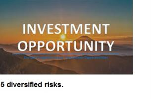 Equity Investor / silent partner / angel investor wanted to purchase a couple of businesses.