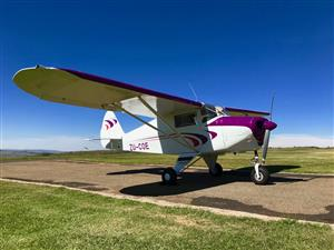 Neatest Piper PA22 Colt ZU-COE In the world Price Reduced