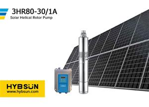 """Helical Rotor Pumps