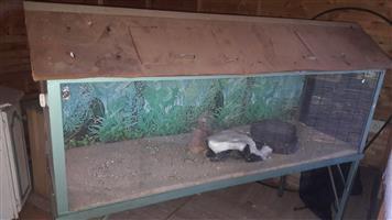 Fish aquarium/ snake enclosure
