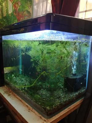 Jewel Aquarium Fish Tank For Sale