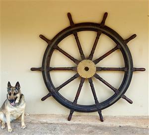 Ship wheel (helm) antique