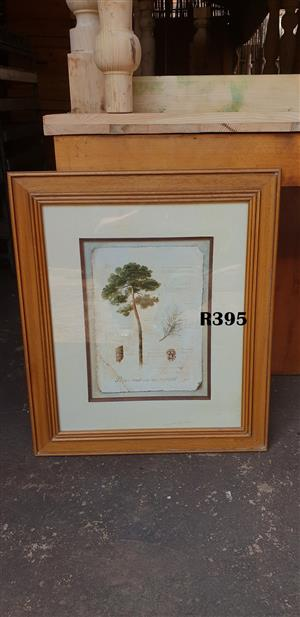 Framed f de Villeneuve Pine Tree Picture (585x685)