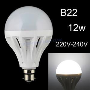 LED Light Bulbs: 12W 220V Globes. Brand New Globes.