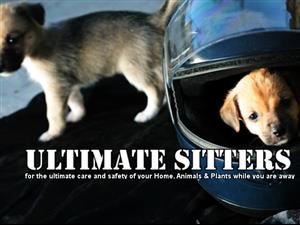 House Sitting & Pet Care services