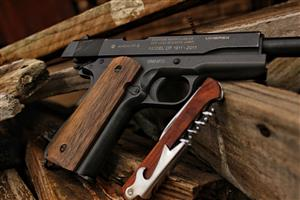 Classic Colt 1911 Co2 gas gun