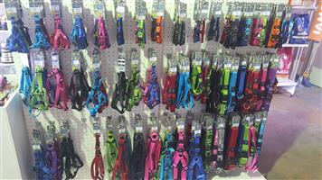 CAT AND DOG Collars, Leads, Harnesses and muzzles available at PETS4LIFE BRACKENFELL