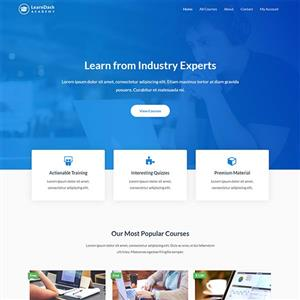 Professional Websites @ R49