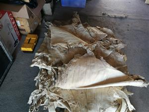 leather sheep hides