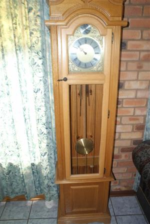 Grandfather clock. Tempes Fugit inscription.  Was R12 000. Now R7000