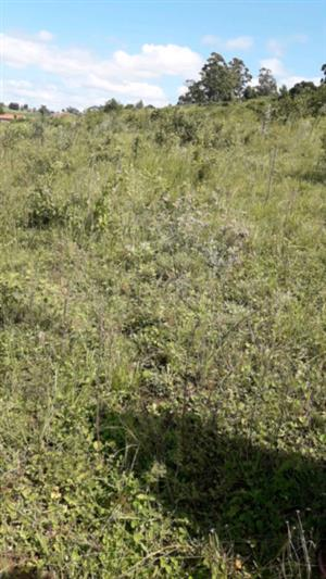 Site for sale at Umbumbulu area