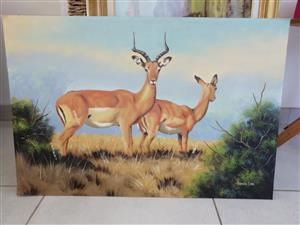 Buck Oil Painting for Sale