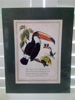 Guinness 'The Toucan' Genuine Print Circa: 1952 by Artist: Lobban