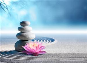 Become a Sh'Zen consultant