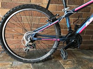 Avalanche Kids Mountain Bike
