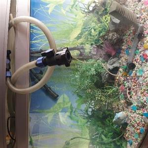 Corner tropical fish tank for sale