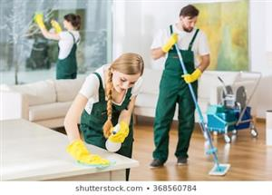 Painting and cleaning service and renovating