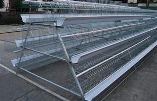 Chicken Layers cages avialable in all sizes