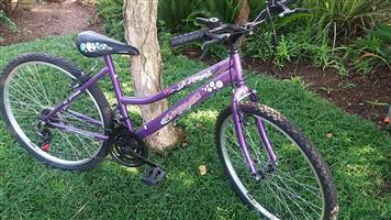 dames fiets