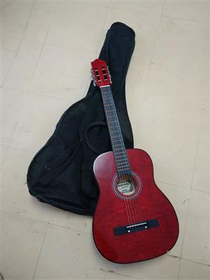 Guitar met sak