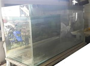 Fish Tank (Large 684 Litre) & Accessories - Excellent Condition