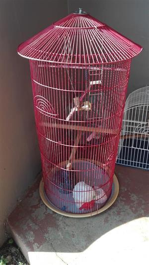 Round red bird cage