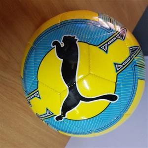 puma evo force soccerball