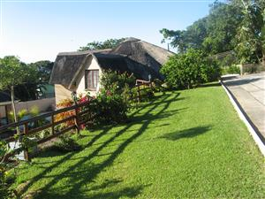 Margate: Self-catering cottages : near the beach. 46 Hibiscus Ave. 0832673562 R350 pp pn