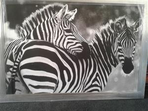 Framed Zebra Canvas Print