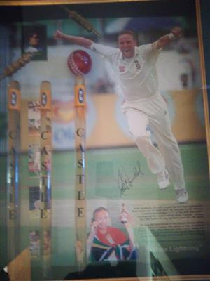 One of a kind Allan Donald portrait