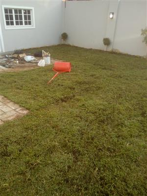 Top quality instant lawn supplier and installer. And top soil, compost and lawn dressing at best prices