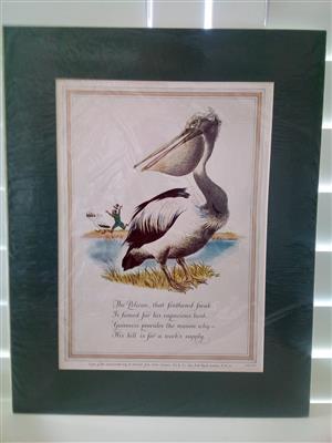 Guinness 'The Pelican' Genuine Print Circa: 1952 by Artist: Lobban