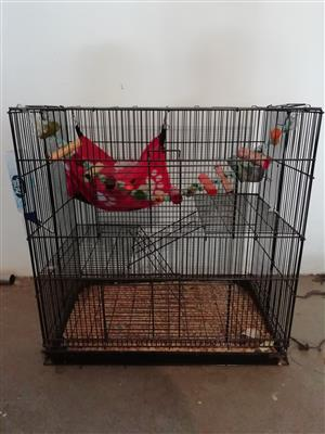 Rat or mice cage with accessories for sale