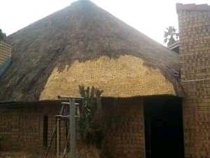 thatching and harvey tile