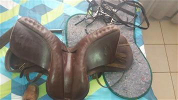 GP horse saddle and tack