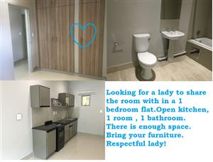Roommate- to share a 1bed flat  with female-secure in Randburg, johannesburg area