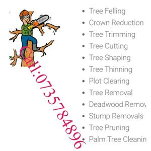 Call:0735784896:Tree felling. Tree cutting. Tree trimming.& many more tree services:::team you can trust