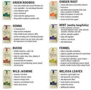 Rooibos and Herbal Tea