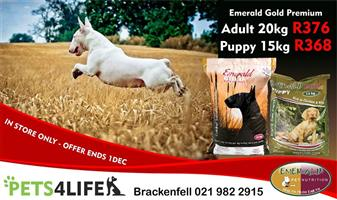 EMERALD GOLD PREMIUM Dog Food Now on Promotion at PETS4LIFE BRACKENFELL