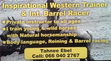 Inspirational Natural horsemanship trainer