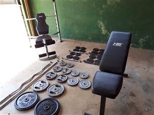 Gym Equipment: Bench / Barbell / Dumbbell / Weights
