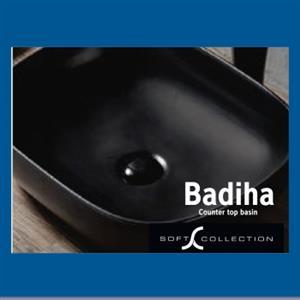 Sanitary : Basin (Badiha)
